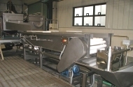 potato triming conveyor